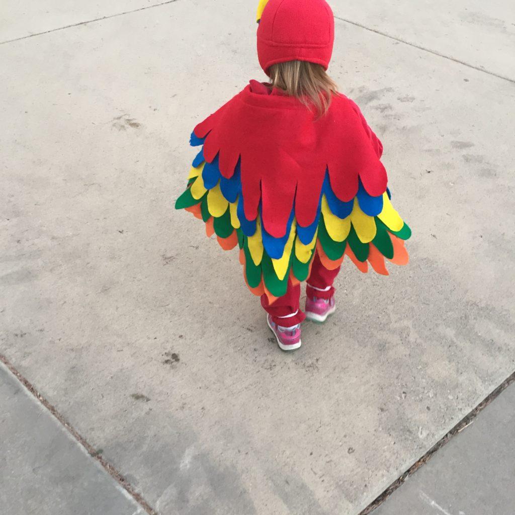 Miss S Parrot 2017